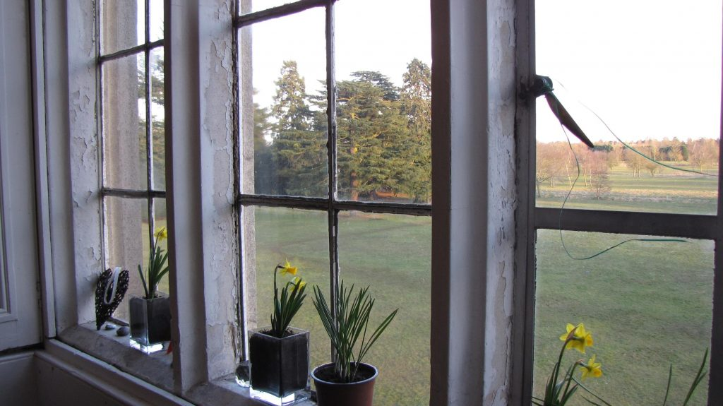 View from Amys living room at delapre abbey
